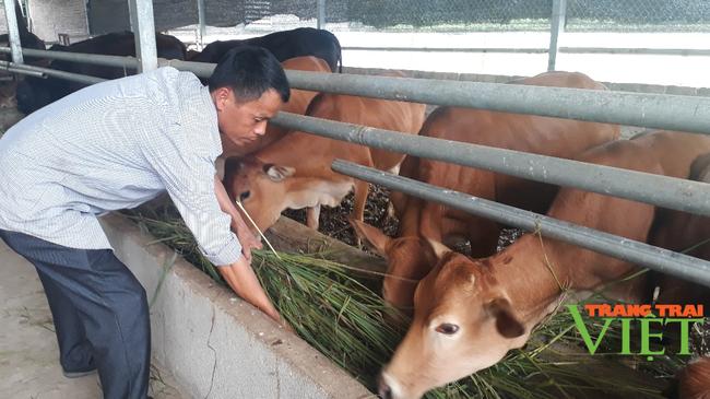 Hội Nông dân Lai Châu: Nâng cao hiệu quả các hoạt động tư vấn, hỗ trợ, dạy nghề cho nông dân - Ảnh 3.