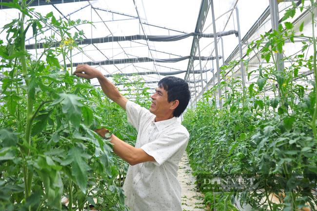 """Chuyển đổi số trong nông nghiệp ở Lâm Đồng (bài 1): Nông dân, doanh nghiệp đều tham gia """"cuộc chơi"""" công nghệ - Ảnh 1."""