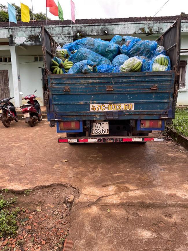 Gia Lai: 9X đưa xe tải đi chở hơn 3 tấn chuối trộm - Ảnh 2.