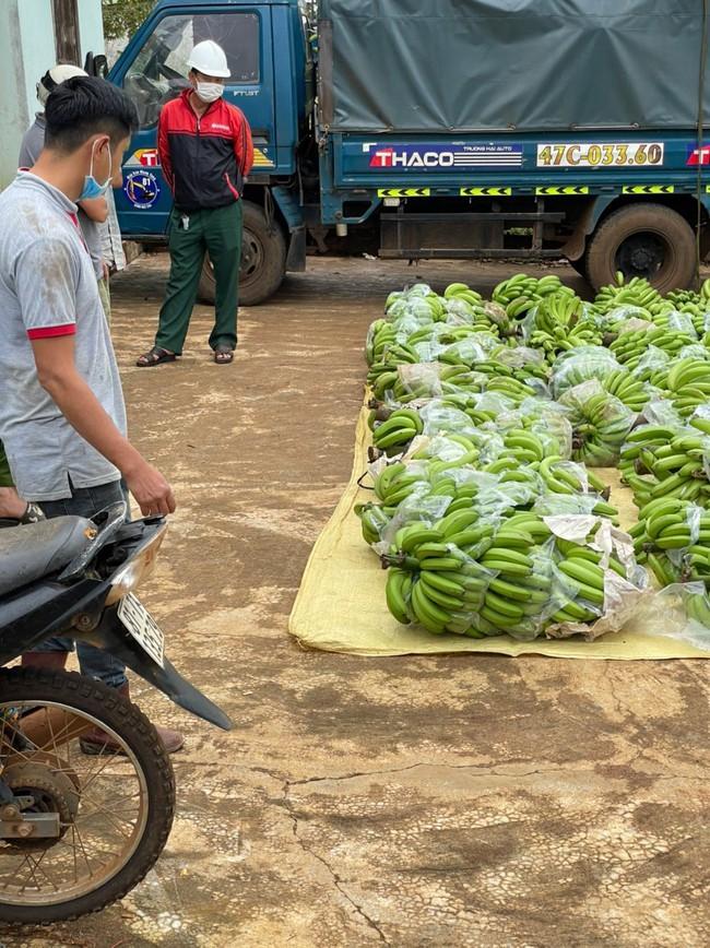 Gia Lai: 9X đưa xe tải đi chở hơn 3 tấn chuối trộm - Ảnh 1.