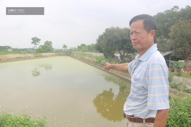 """Ninh Bình: U60 nuôi, trồng """"lung tung"""" bỏ túi gần 500 triệu/năm - Ảnh 2."""