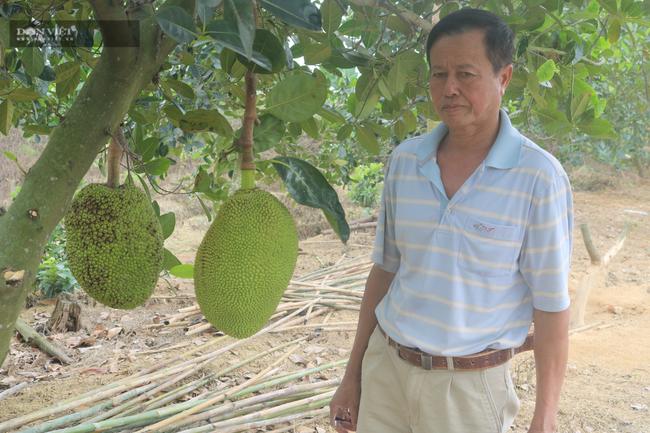 """Ninh Bình: U60 nuôi, trồng """"lung tung"""" bỏ túi gần 500 triệu/năm - Ảnh 1."""