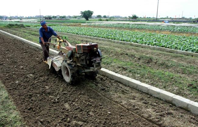 """Những cuộc """"cách mạng"""" trên đất lúa kém hiệu quả (bài 3): Đất hoang thành ruộng  trăm triệu - Ảnh 1."""