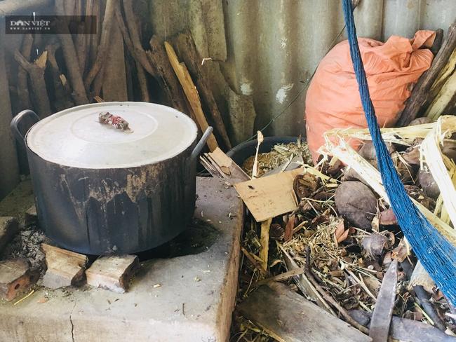 Ninh Bình: Thêm thu nhập từ nghề khêu ruột con ốc hột  - Ảnh 3.