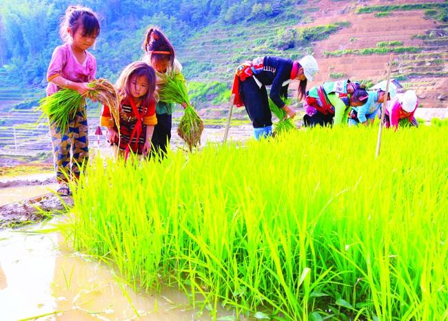 Mùa đổ nước ở thung lũng Thiên Sinh - Ảnh 2.