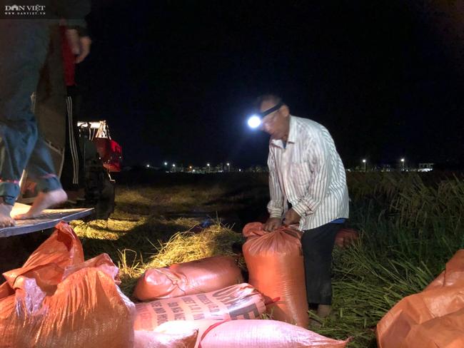 """CLIP – ẢNH: Nông dân Hà Tĩnh """"trốn nắng"""", gặt lúa xuyên đêm - Ảnh 5."""