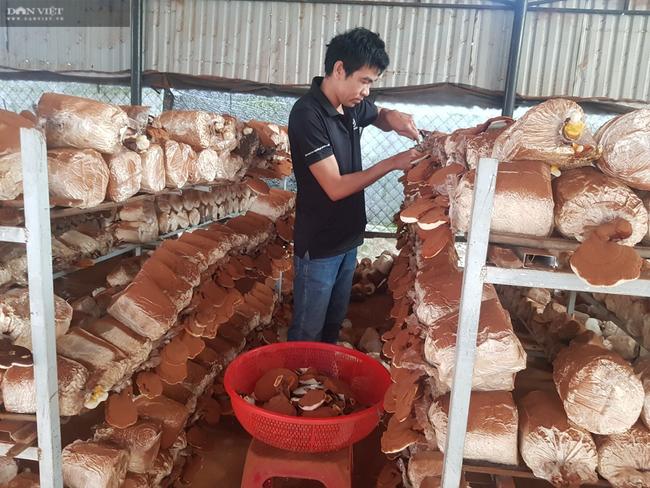 Đà Nẵng: Những vấn đề nổi bật ông Nguyễn Đình Khánh Vân đề ra khi ứng cử Hội đồng nhân dân thành phố - Ảnh 5.