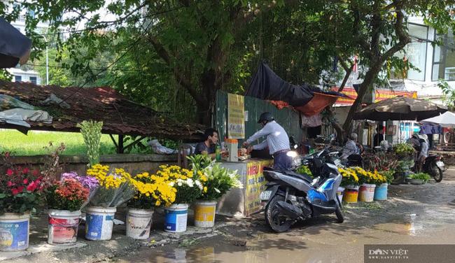 Chợ cóc vẫn hoạt động rầm rộ sau khi Hà Nội ban hành lệnh cấm để chống dịch COVID-19 - Ảnh 4.