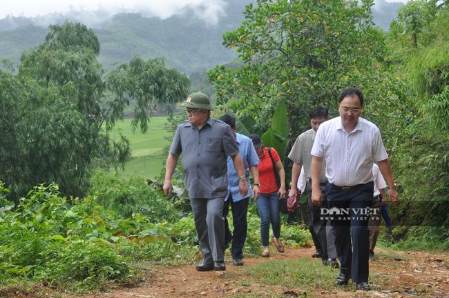 """""""Thủ lĩnh"""" nông dân Yên Bái trăn trở với khó khăn của nông dân vùng cao - Ảnh 5."""