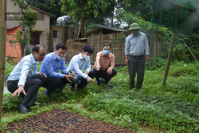 Chuyện bầu cử ở Quảng Ninh: Khi tiếng nói của người nông dân ngày càng mạnh mẽ - Ảnh 2.