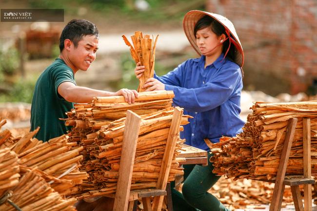 Chuyện bầu cử ở Quảng Ninh: Khi tiếng nói của người nông dân ngày càng mạnh mẽ - Ảnh 3.