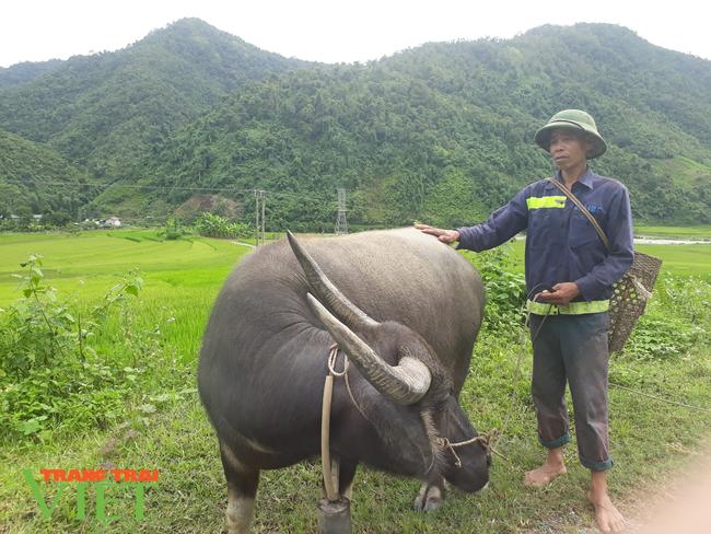 Lai Châu: Phát huy hiệu quả đồng vốn Quỹ hỗ trợ nông dân - Ảnh 3.