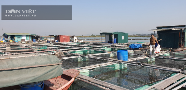 Quảng Ninh: Xóa sổ phao xốp trong nuôi trồng thủy sản từ năm 2022 - Ảnh 2.