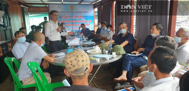 Quảng Ninh: Xóa sổ phao xốp trong nuôi trồng thủy sản từ năm 2022 - Ảnh 3.