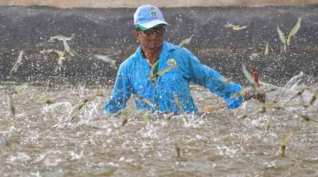 Chỉ một động thái của Mỹ, EU, xuất khẩu loại thủy sản này của Việt Nam phục hồi, thu ngay 3,27 tỷ USD - Ảnh 3.