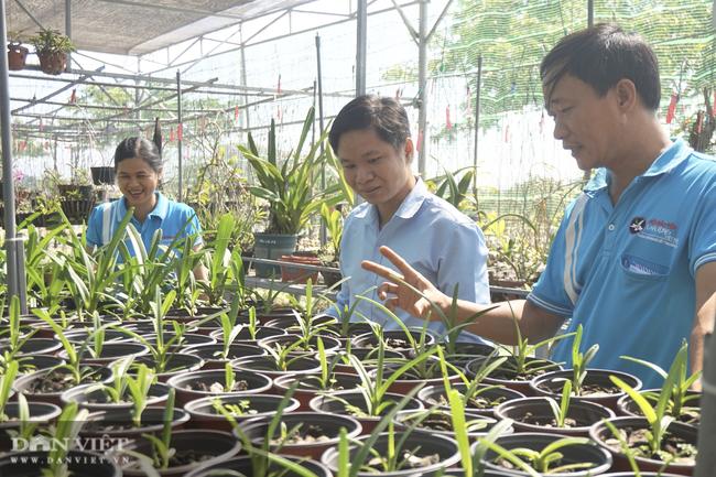 """Bảo tồn lan rừng quý hiếm, một phụ nữ ở Đà Nẵng """"rủng rỉnh"""" thu tiền tỷ mỗi năm - Ảnh 10."""