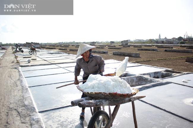Nghệ An: Diêm dân phơi mình dưới cái nắng 40 độ C - Ảnh 1.