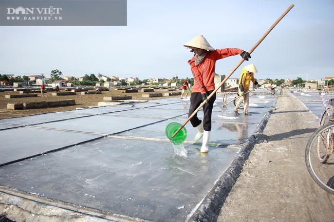 Nghệ An: Diêm dân phơi mình dưới cái nắng 40 độ C - Ảnh 10.