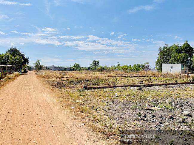 TP.HCM điều chỉnh lại hệ số K đất nông nghiệp vì chưa phù hợp - Ảnh 1.