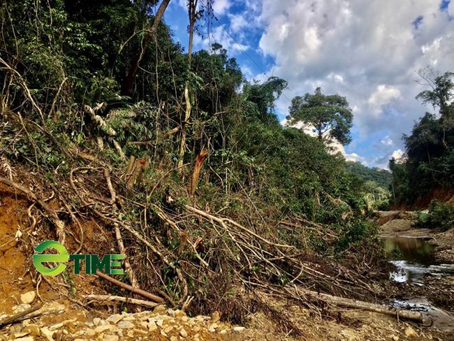 Quảng Ngãi: Chủ dự án thuỷ điện ngang nhiên phá, chiếm đất rừng phòng hộ trái phép  - Ảnh 3.