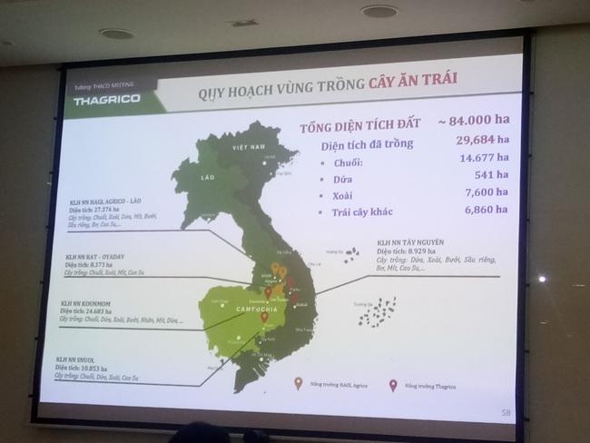 Thaco của tỷ phú Trần Bá Dương đưa công ty con Thaco Auto thành công ty đại chúng - Ảnh 5.
