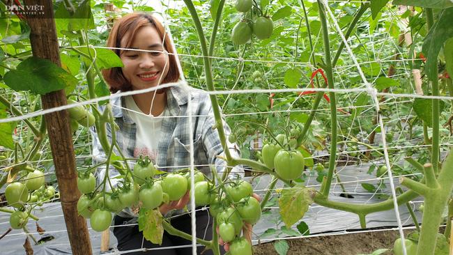 Ninh Bình: Vào tận chân núi trồng đủ thứ, cô thôn nữ miền sơn cước hái hàng chục triệu/tháng - Ảnh 2.