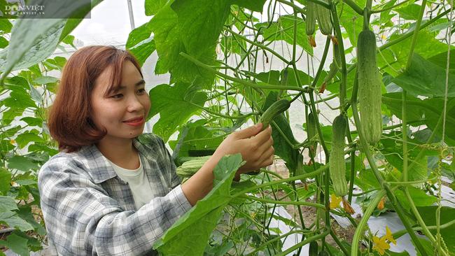 Ninh Bình: Vào tận chân núi trồng đủ thứ, cô thôn nữ miền sơn cước hái hàng chục triệu/tháng - Ảnh 4.