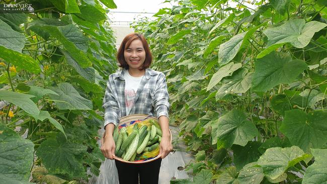 Ninh Bình: Vào tận chân núi trồng đủ thứ, cô thôn nữ miền sơn cước hái hàng chục triệu/tháng - Ảnh 6.