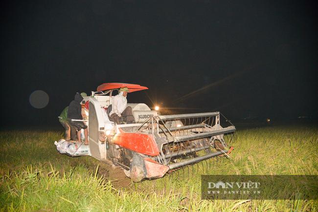 Người dân ngoại thành Hà Nội tất bật gặt lúa dưới thời tiết nắng nóng 40 độ C - Ảnh 10.