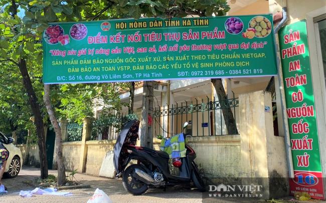 Hội Nông dân Hà Tĩnh làm cầu nối tiêu thụ dưa lưới giúp người dân vùng dịch - Ảnh 5.