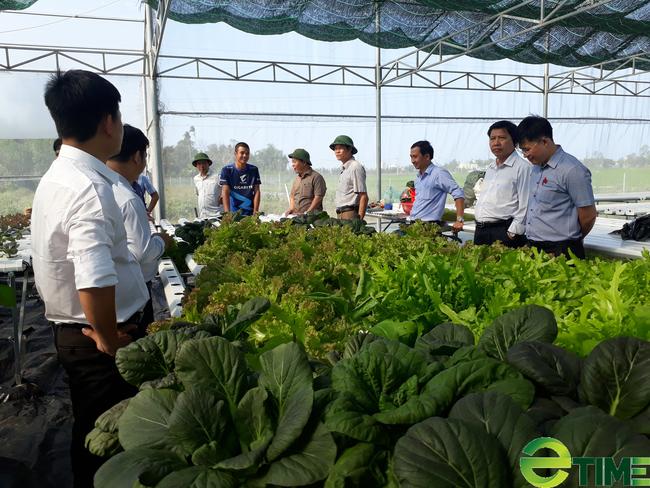 Quảng Nam: Thủ tướng công nhận thành phố Tam Kỳ đạt chuẩn Nông thôn mới - Ảnh 4.