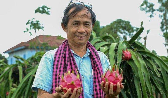 Ông Yang Saing Koma bên cay cây thanh long. Khmer Times