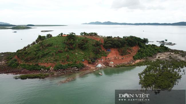 Móng Cái (Quảng Ninh): Đảo Đầu Sơn bị tàn phá - Ảnh 1.