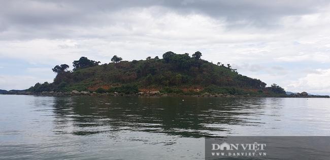 Móng Cái (Quảng Ninh): Đảo Đồn Sơn bị tàn phá - Ảnh 4.