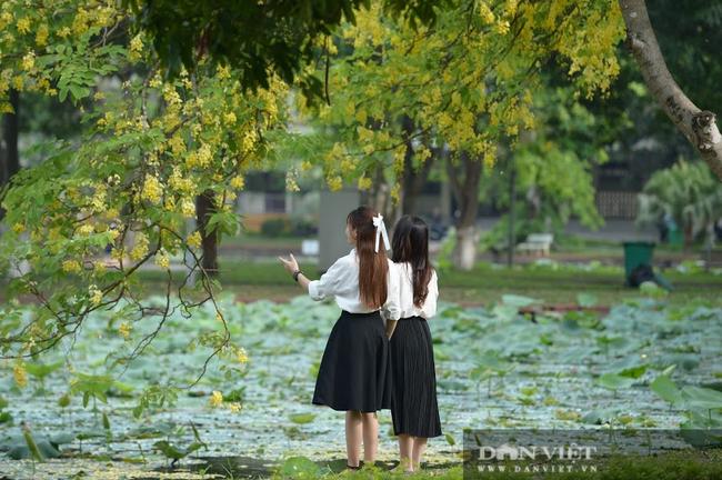"""Mỏi chân khám phá trường đại học nhiều cây xanh nhất Việt Nam, nhiều góc cực """"chill"""" - Ảnh 6."""