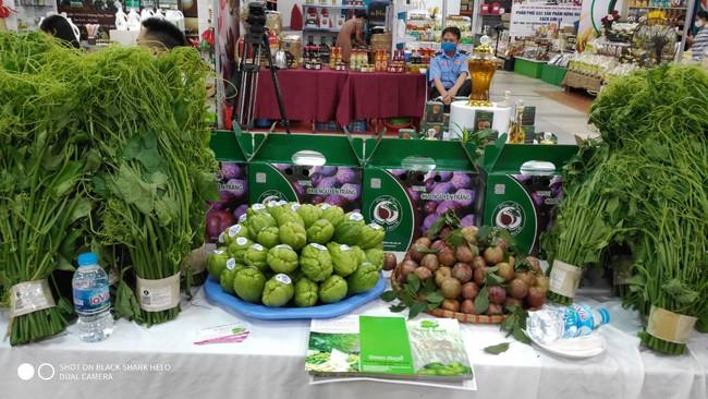 Tìm đường đưa nông sản vào siêu thị - Ảnh 1.