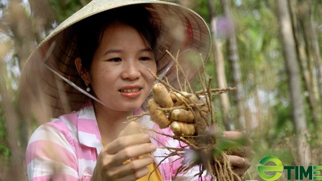 Quảng Nam: Sau khi sinh, cô gái xứ Tiên làm nên thương hiệu nghệ trắng nứt tiếng trên thị trường - Ảnh 1.