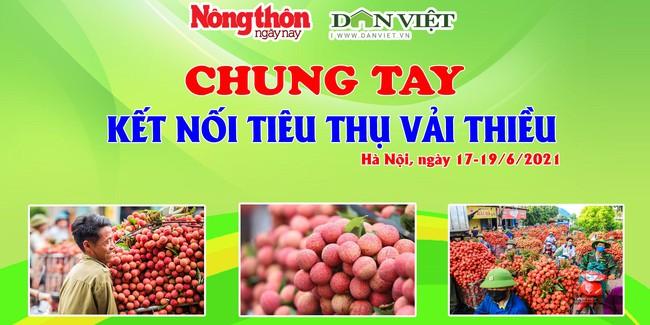 Báo NTNN/ Điện tử Dân Việt kết nối, hỗ trợ tiêu thụ vải thiều Bắc Giang - Ảnh 1.