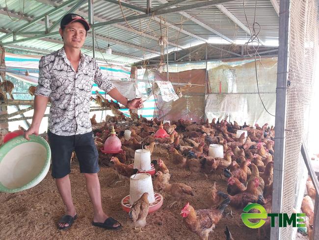 Quảng Nam: Được Agribank tiếp vốn, nhiều nông dân mạnh dạn vay vốn làm ăn thoát nghèo - Ảnh 1.