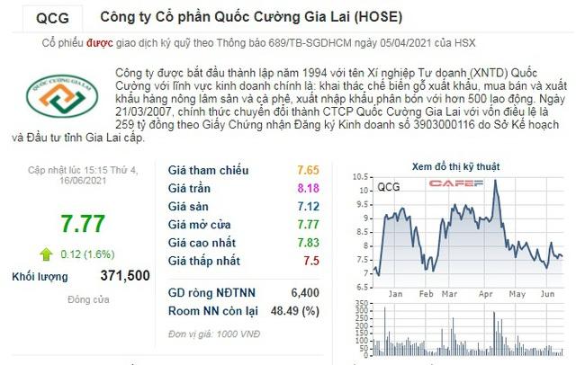 Lãnh đạo đồng loạt từ nhiệm, cổ phiếu nhà Cường đô la vẫn… xanh  - Ảnh 3.