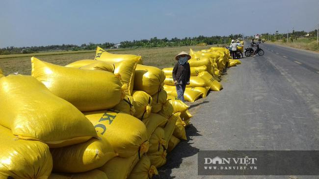 Giá phân tăng mạnh, lái bỏ chạy, nông dân trồng lúa vụ hè thu chới với - Ảnh 4.