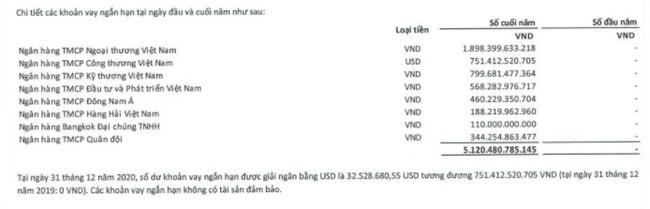 """Tin đồn phá sản, cổ phiếu Vietnam Airlines """"đỏ sàn"""", nhà đầu tư phản ứng gì? - Ảnh 4."""