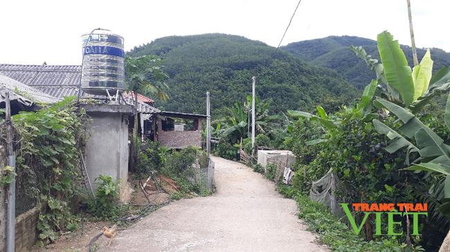 Nông dân Sìn Hồ chung sức xây dựng nông thôn mới - Ảnh 3.