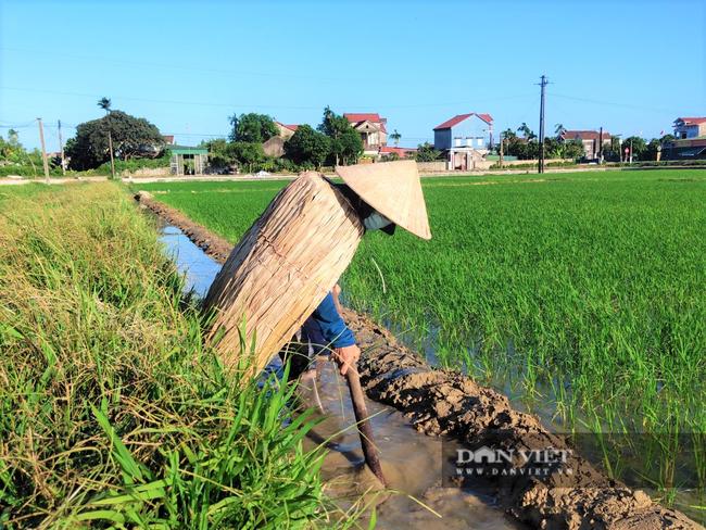 Clip - Ảnh: Nắng đỉnh điểm, nông dân Hà Tĩnh cực nhọc ra đồng làm việc - Ảnh 3.
