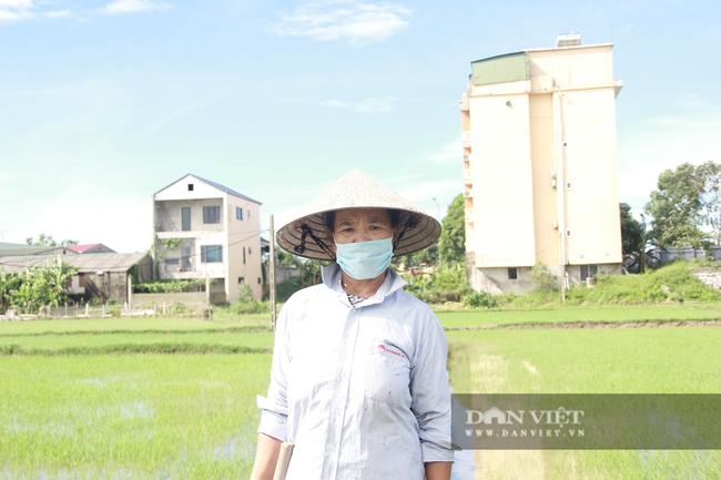 Clip - Ảnh: Nắng đỉnh điểm, nông dân Hà Tĩnh cực nhọc ra đồng làm việc - Ảnh 10.