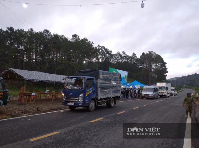 Lâm Đồng: Tạm dừng vận tải hành khách đến một số địa phương để phòng dịch Covid-19 - Ảnh 2.