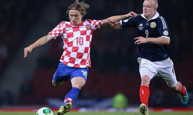 Mèo tiên tri Cass dự đoán kết quả Croatia vs Scotland: Bất ngờ! - Ảnh 1.
