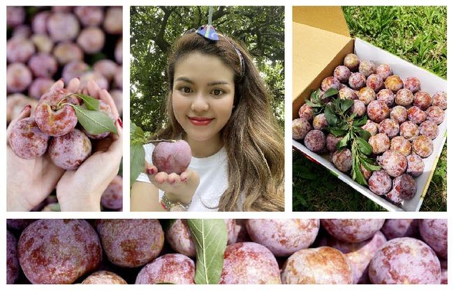 Trái mận hậu Ruby Sơn La được giới thiệu trên trang thương mại điển tử. Ảnh Foodmap