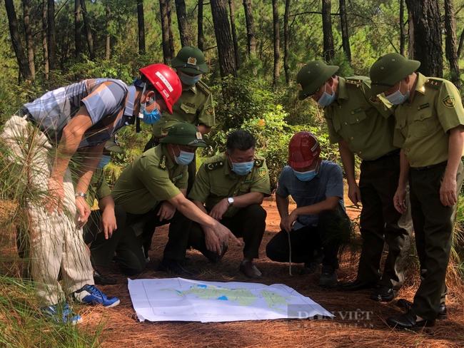 Ứng phó với nguy cơ cháy rừng ngày nắng nóng - Ảnh 1.