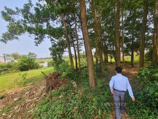 Bộ Xây dựng 'thúc' các địa phương báo cáo xử lý 'sốt đất' - Ảnh 3.